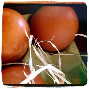 Post 26 Egg