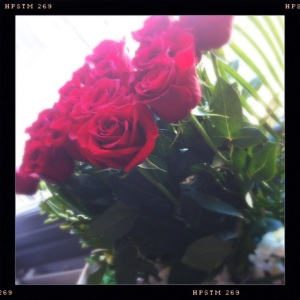 Post 74 Rose