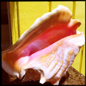 Post 91 Conch
